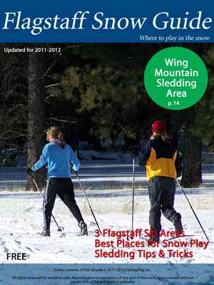 Flagstaff Snow Guide Cover